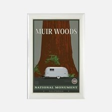 Muir Woods 1 Rectangle Magnet