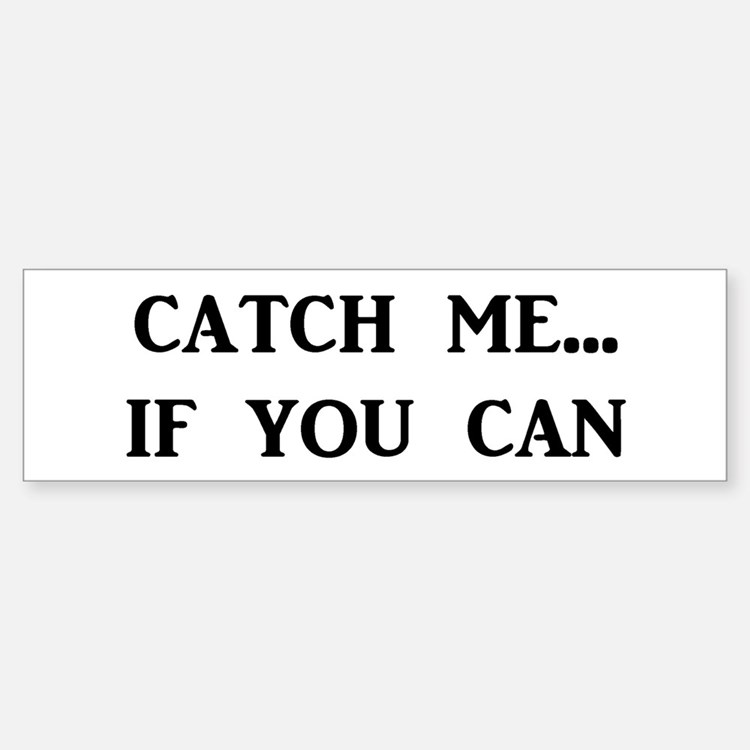 Catch Me If You Can Bumper Car Car Sticker