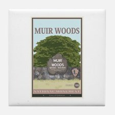 Muir Woods 2 Tile Coaster