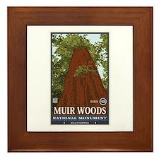 Muir Woods 3 Framed Tile