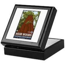 Muir Woods 3 Keepsake Box