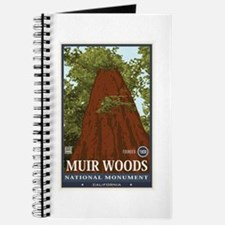 Muir Woods 3 Journal