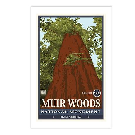 Muir Woods 3 Postcards (Package of 8)