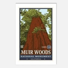 Muir Woods 3 Postcards (Package of 8)