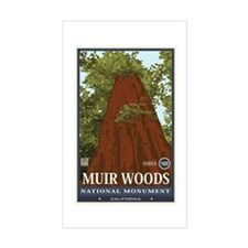 Muir Woods 3 Decal