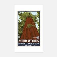 Muir Woods 3 Stickers