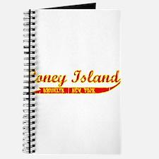 Coney Island Brooklyn, New Yo Journal