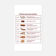Bristol-saurskvarðinn Sticker (Rectangle)