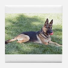 German Shepherd Lying Design Tile Coaster