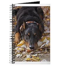 Beauceron Leaves Journal