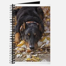 Beauceron Leaves Journal