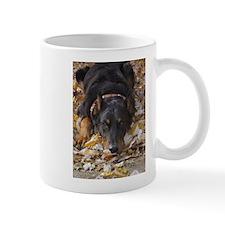 Beauceron Leaves Mug