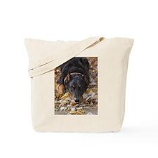 Beauceron Leaves Tote Bag