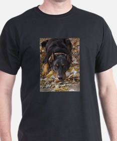 Beauceron Leaves T-Shirt