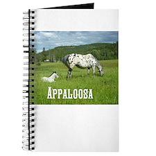 Beautiful Appaloosa Journal
