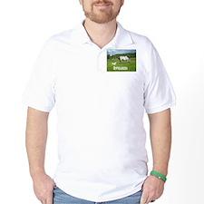 Beautiful Appaloosa T-Shirt
