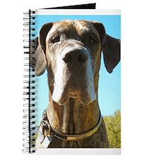 Jamie Blue Skies Journal