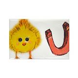 Chicken magnet 10 Pack