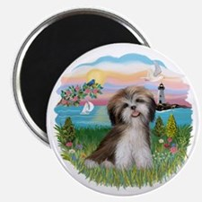 LightHouse-ShihTzu#2 Magnet