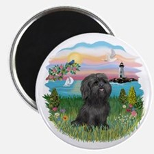LightHouse-BlackShihTzu Magnet