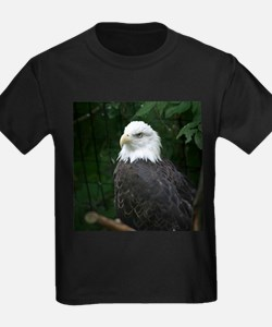 eagle Ash Grey T-Shirt