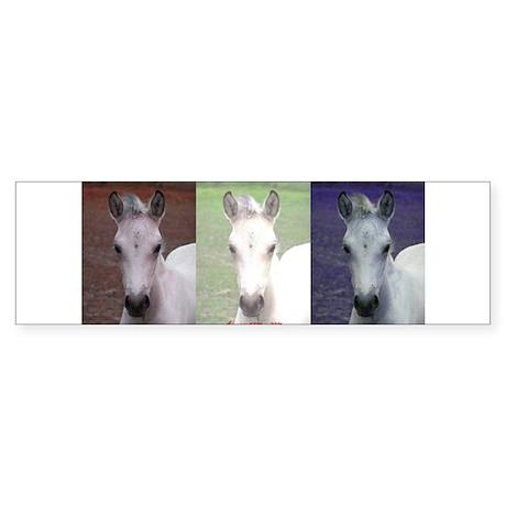 Horse Patriot Bumper Sticker