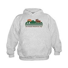 Adirondack Mountains NY Hoodie