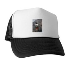 Puffin Sliding Trucker Hat