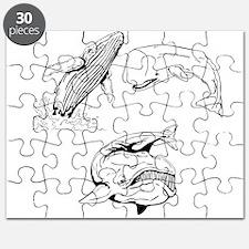 Whale Puzzle