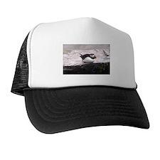 Puffin Sitting Trucker Hat