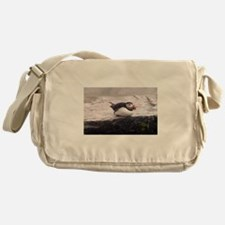 Puffin Sitting Messenger Bag
