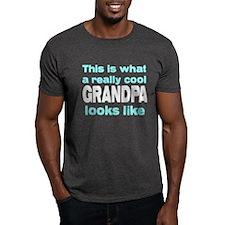 Really Cool Grandpa Looks Lik T-Shirt