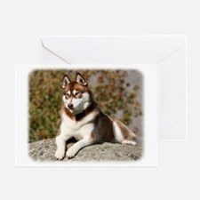 Siberian Husky 9Y773D-064 Greeting Card