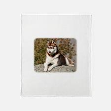 Siberian Husky 9Y773D-064 Throw Blanket
