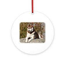 Siberian Husky 9Y773D-064 Ornament (Round)