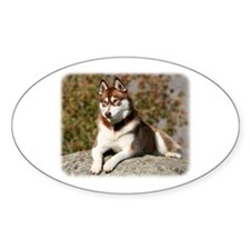 Siberian Husky 9Y773D-064 Decal
