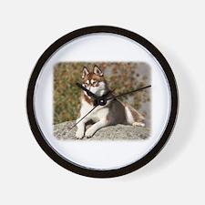 Siberian Husky 9Y773D-064 Wall Clock