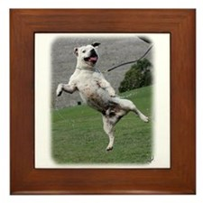 Staffordshire Bull Terrier 9Y773D-333 Framed Tile