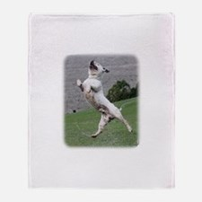 Staffordshire Bull Terrier 9Y773D-359 Stadium Bla