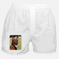 Thai Ridgeback 9Y815D-019 Boxer Shorts