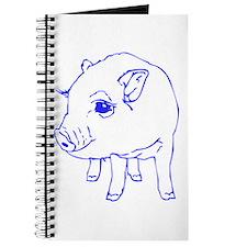 MINI PIG Journal