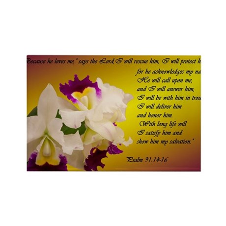 Psalm 91 Rectangle Magnet (10 pack)
