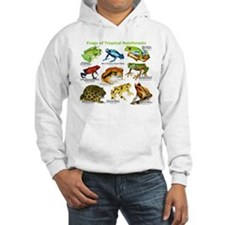 Frogs of the Tropical Rainforests Jumper Hoody