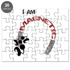 I am magnetic! Puzzle
