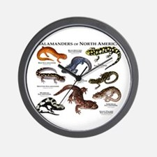 Salamanders of North America Wall Clock