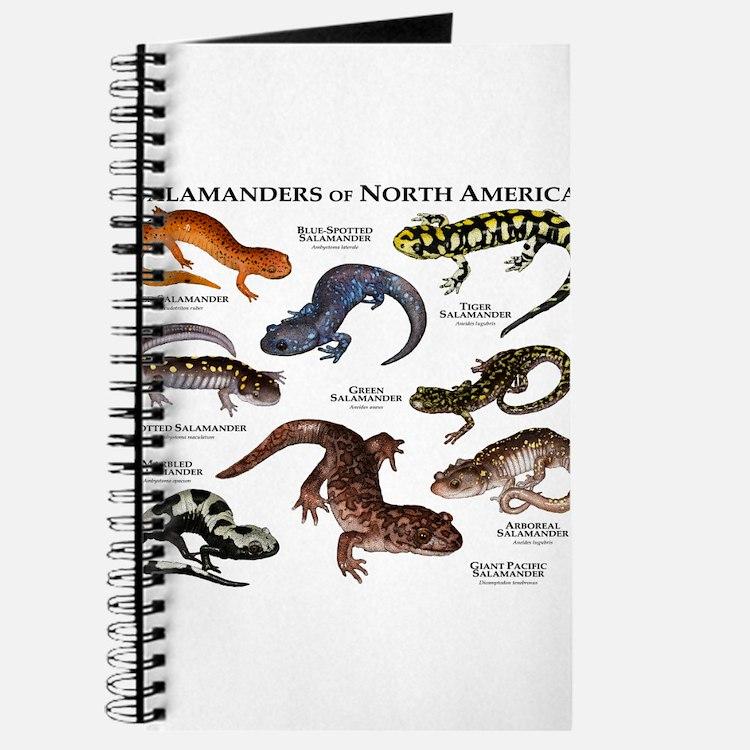 Amphibians Journal Amphibian Offic...