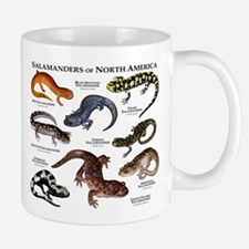 Salamanders of North America Mug