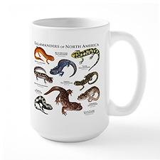 Salamanders of North America Mug