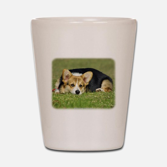 Welsh Corgi Pembroke 9M72D-05 Shot Glass