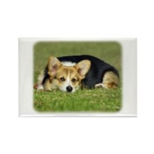 Welsh Corgi Pembroke 9M72D-05 Rectangle Magnet